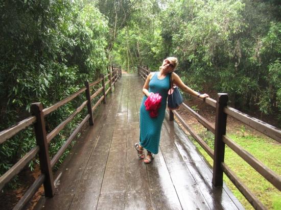 The jungle bridge!