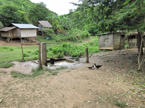 The pump, which is the main water source in the village,is shared with a variety of animals and humans